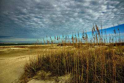 Photograph - Guardians Of The Beach by John Harding