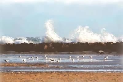 Caravaggio - Gulls by David Oliver