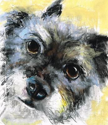 Painting - Gunny by Frances Marino