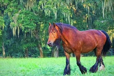 Photograph - Gypsy Vanner Pasture Horse by Alice Gipson
