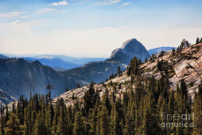 Photograph - Half Dome Yosemite National Park  by Chuck Kuhn