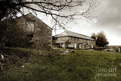 Photograph - Halwyn Farm Mylor Cornwall by Terri Waters