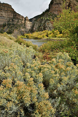 Photograph - Hanging Lake Rest Area Fall Colors by Ray Mathis