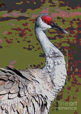 Photograph - Hansome Sandhill Crane Digital Art by Carol Groenen