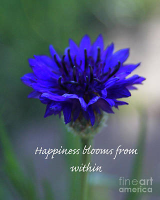 Photograph - Happiness Blooms From Within by Tony Baca