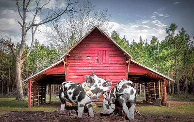 Digital Art - Happiness On The Farm Early Morning Sunshine by Debra and Dave Vanderlaan