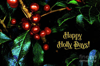 Photograph - Happy Holly Days by Anita Pollak