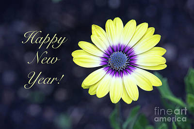 Photograph - Happy New Year Floral by Sharon McConnell