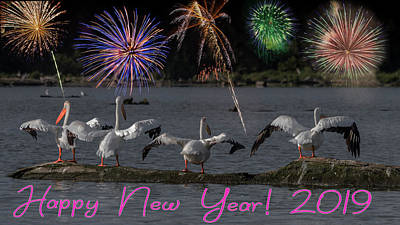 Photograph - Happy New Year 2019 - Four Pelicans by Patti Deters