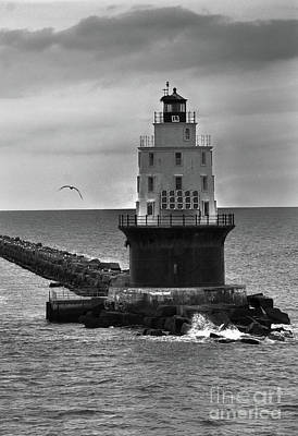 Photograph - Harbor Of Refuge Lighthouse Bnw by Skip Willits