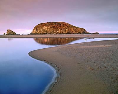 Photograph - Harris Beach State Park, Oregon by Tim Fitzharris/ Minden Pictures