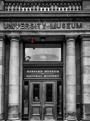 Photograph - Harvard Museum Of Natural History by Chris Montcalmo