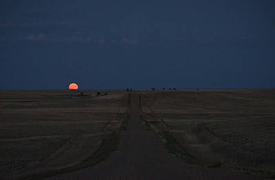 Photograph - Harvest Moon 1 by Carl Young