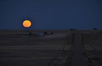Photograph - Harvest Moon 2 by Carl Young