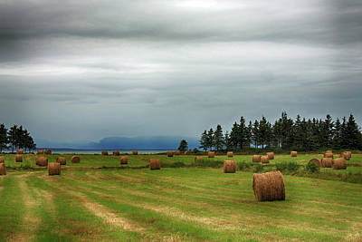 Art Print featuring the photograph Harvest Time In Canada by Tatiana Travelways