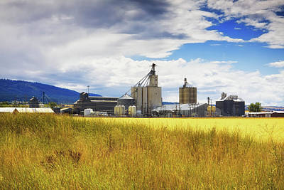 Art Print featuring the photograph Harvest Time In Idaho 2 by Tatiana Travelways