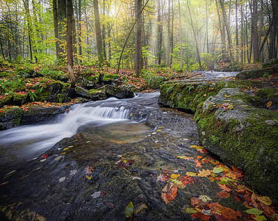 Photograph - Hatch Brook by Bill Wakeley