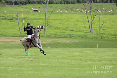 Photograph - Hawaii Polo by Jim West