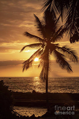 Photograph - Hawaii Sunset by Jim West