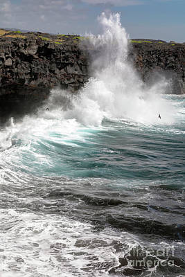 Photograph - Hawaii Surf by Jim West