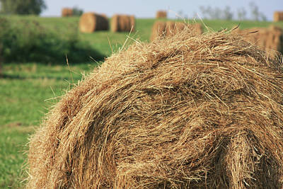 Photograph - Hay Bail Closeup by Tatiana Travelways
