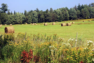 Art Print featuring the photograph Hay Bails And Wild Flowers by Tatiana Travelways