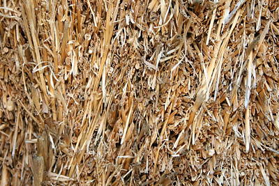 Photograph - Straw Bale by Julie Kindt