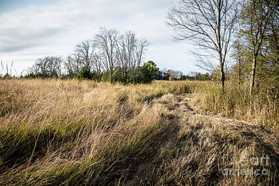 Photograph - Hayfield by Cheryl McClure
