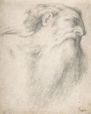 Drawing - Head Of A Bearded Man by Lorenzo Lotto