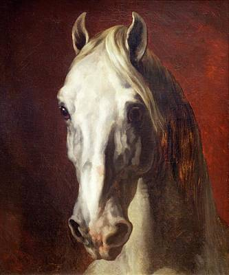 Painting - Head Of A White Horse By Theodore by Peter Barritt