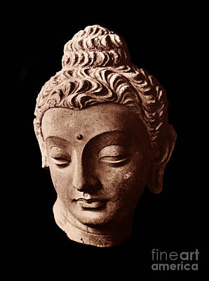 Sculpture - Head Of The Buddha, Afghanistan by Afghanistan School