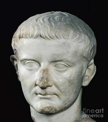 Sculpture - Head Of Tiberius  by Roman School
