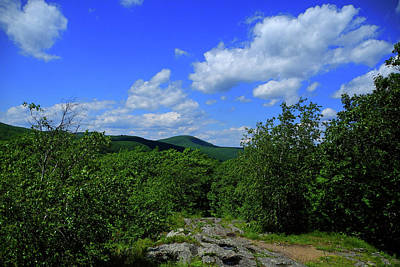 Photograph - Heading Bear Mountain Connecticut On The Appalachian Trail by Raymond Salani III
