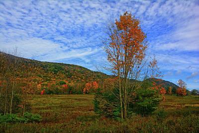 Photograph - Heading Up Mount Greylock On An Autumn Day by Raymond Salani III