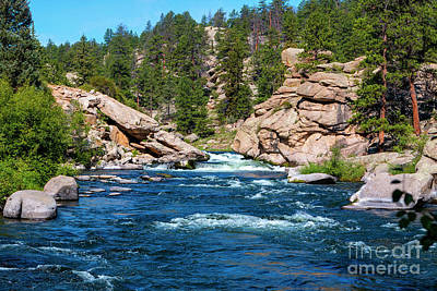 Winter Animals - Headwaters of the South Platte by Steven Krull