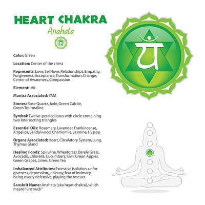 Digital Art - Heart Chakra Chart Illustration by Serena King