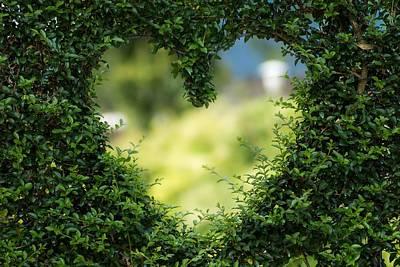 Photograph - Heart green by Fine Art Gallery