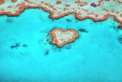 Photograph - Heart Reef by Aaron Foster
