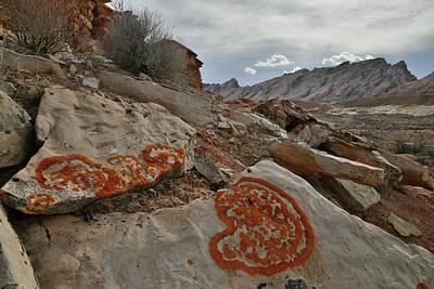 Photograph - Heart Shape Lichens Near San Rafael Swell In Urah by Ray Mathis