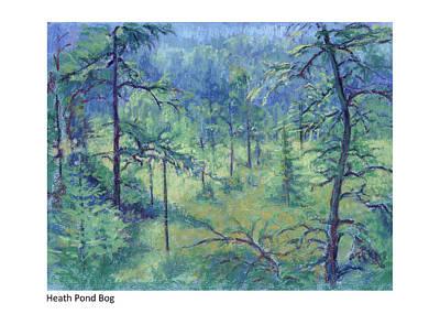 Pastel - Heath Pond Bog by Betsy Derrick