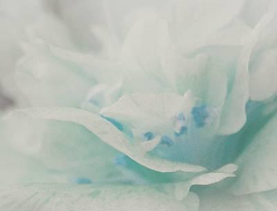 Photograph - Heavenly Dream by The Art Of Marilyn Ridoutt-Greene