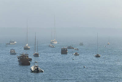 Photograph - Heavy Fog At Seal Harbor by Stefan Mazzola