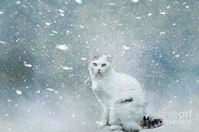 Mixed Media - Heavy Snow by Eva Lechner