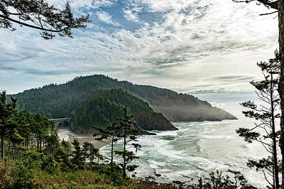 Photograph - Heceta Head November 2018 by Lara Ellis