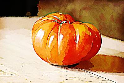 Airplane Paintings - Heirloom Tomato 3 by Cathy Lindsey