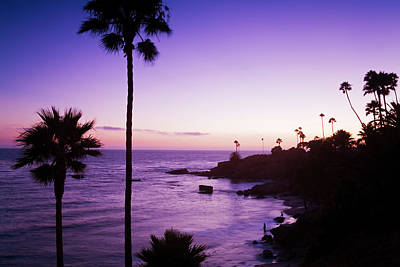 Laguna Beach Wall Art - Photograph - Heisler Park In Laguna Beach, Orange by Richard Cummins / Robertharding