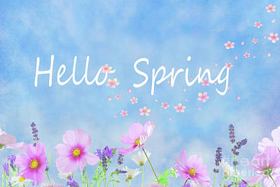 Photograph - Hello Spring by Juli Scalzi