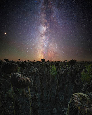 Photograph - Hello,my Name Is Human by Aaron J Groen