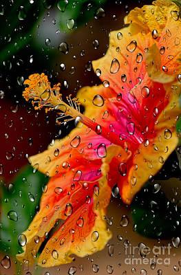 Photograph - Hibiscus Through Raindrops By Kaye Menner by Kaye Menner