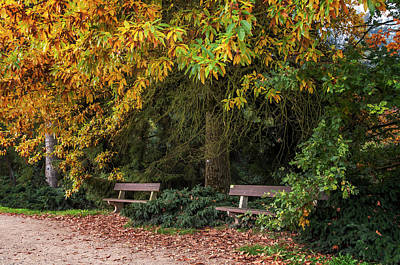 Photograph - Hidden Romantic Corner In Autumn Time by Jenny Rainbow